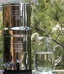 royal berkey internet image