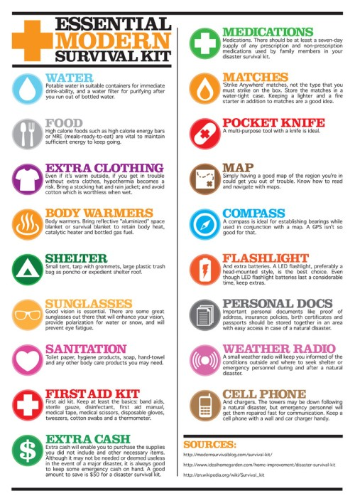 Survival kit Infographic