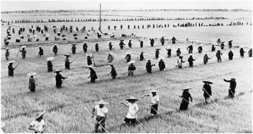 famine china