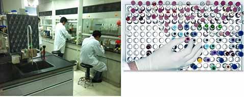 bflu3 bio research