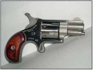 22lr pocket pistol