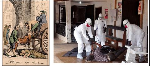 ebola2 dead removal-same