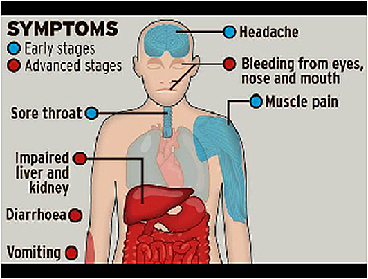 how to avoid stomach virus after exposure